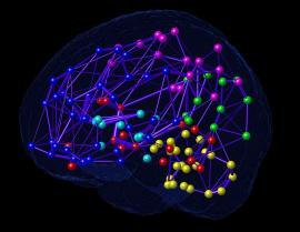 research neuro net