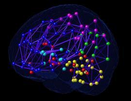 research neuro net
