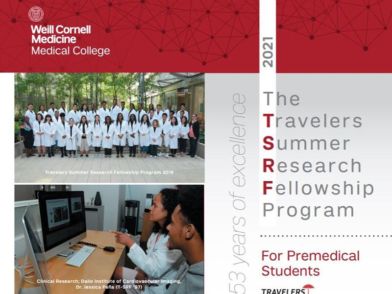 Travelers Summer Research Program Flyer 2021
