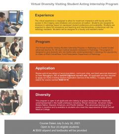 Virtual Diversity visiting Students Program 2021